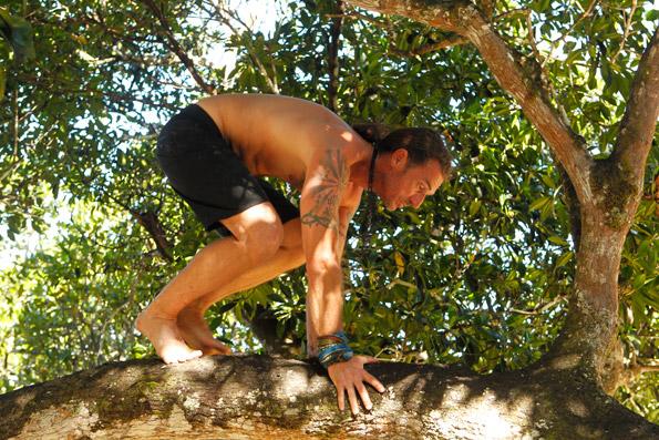 Coach Climbs A Tree