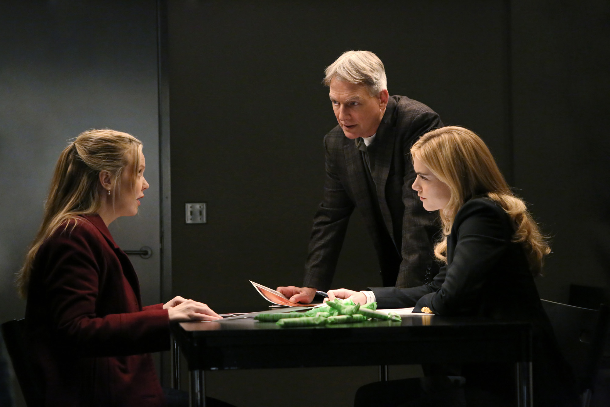 Season 11 Episode 15 - NCIS