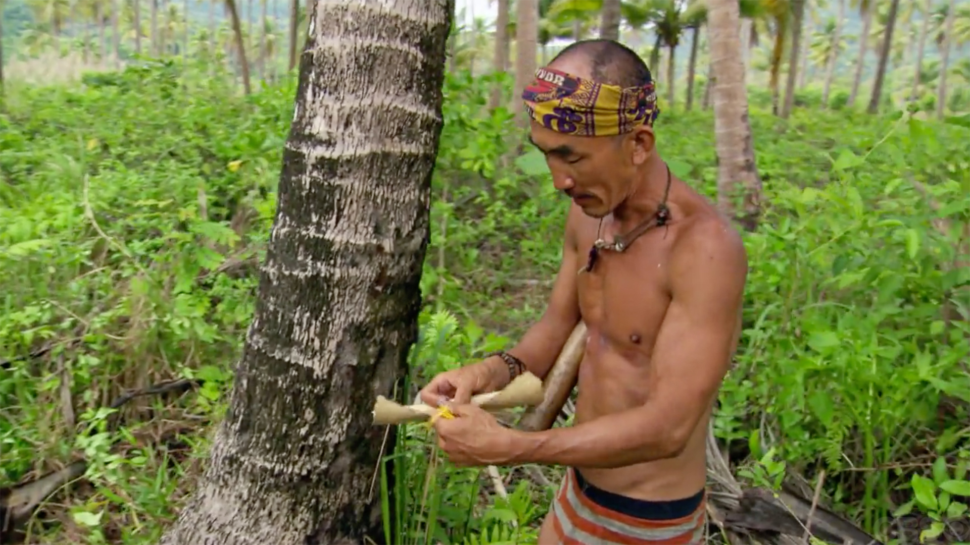Scot Pollard and Tai Trang's Immunity Idols from Survivor: Kaôh Rōng