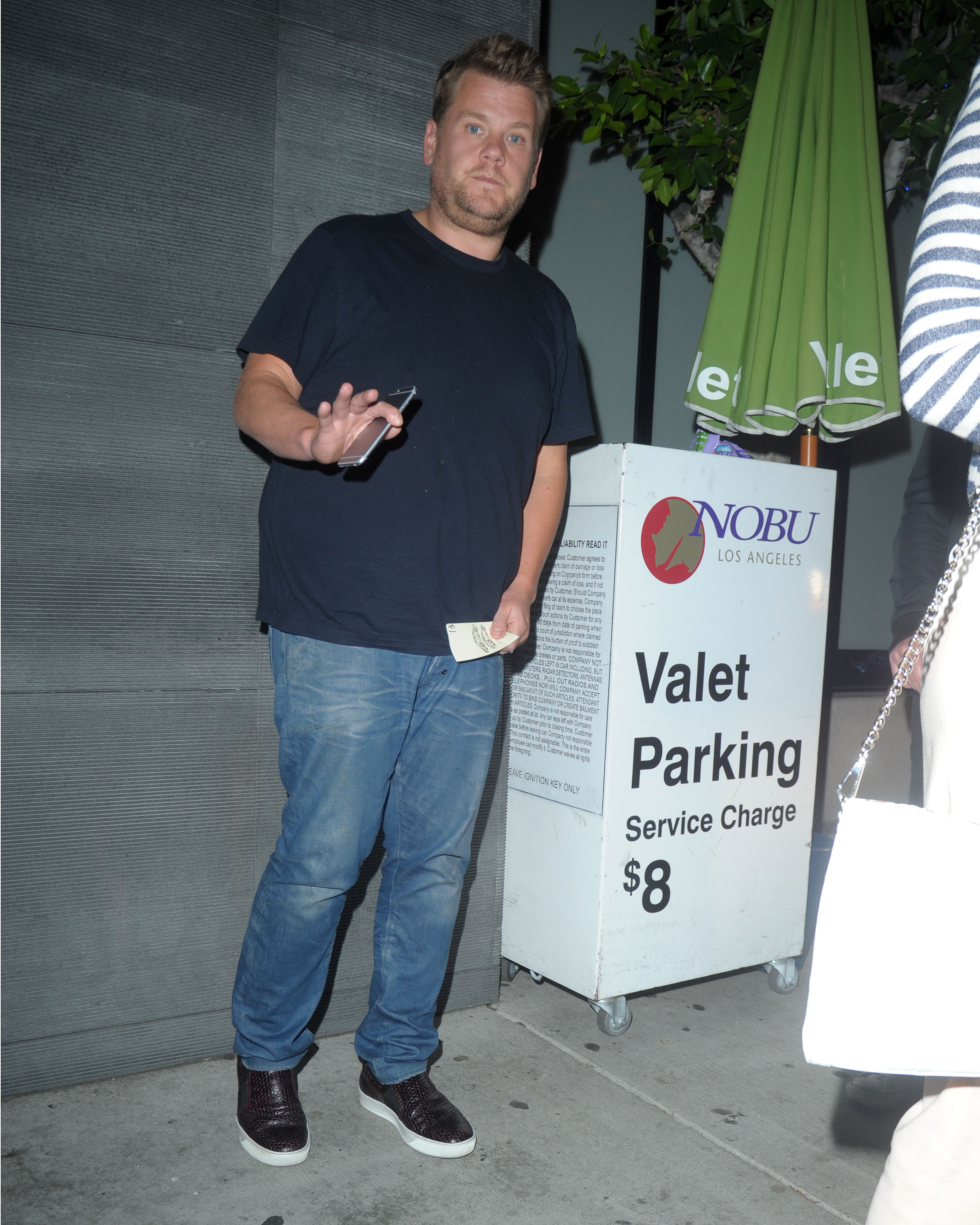 Moonlights as an underdressed valet