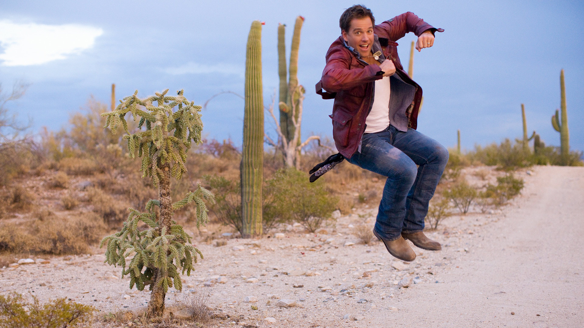 Michael Weatherly jumps for joy