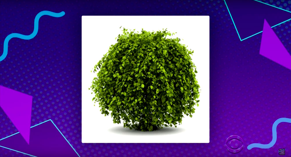 Bring It Back: Full Bush