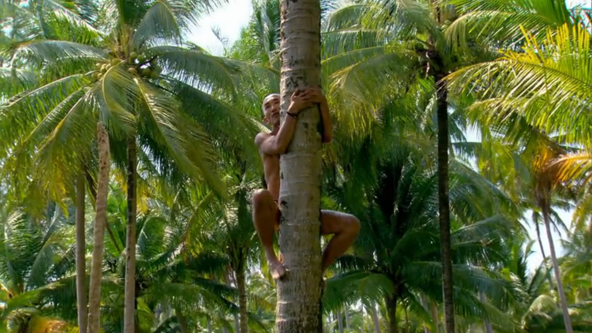 Episode 2: Tai scorches his skin while climbing up a palm tree.