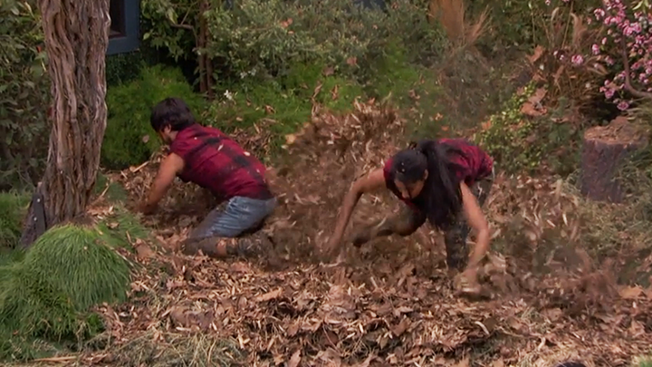 Jackie and James dig through mulch (