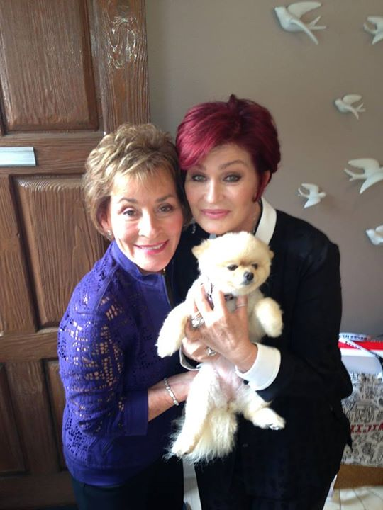 29. Bella has hung out with Judge Judy.