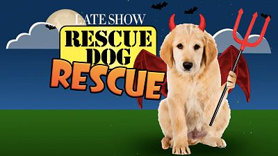 Nick Offerman Wants You To Adopt These Puppies In Halloween Costumes